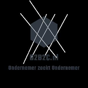b2b2c logo